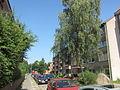 Kappelner Straße Kiel-Wik.jpg