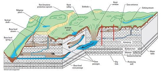 Поперечный разрез карстовой местности с топографическими особенностями и путями водных потоков.