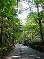 Karuizawa02s2048.jpg