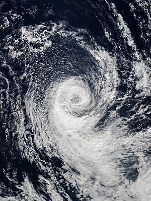 "Tropical cyclogenesis - The cyclone ""Katie"" over the extreme Southeastern Pacific waters in May 2015"