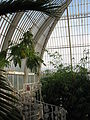 Kew Gardens - London - September 2008 (2952061465).jpg