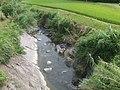 Kiiji, Haratani village(Paddy fields & river) 02.jpg