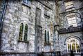 Kilkenny Castle (8229781005).jpg