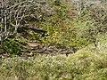 Kimigahatacho, Higashiomi, Shiga Prefecture 527-0202, Japan - panoramio (43).jpg