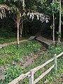 Ko Chang, Ko Chang District, Trat, Thailand - panoramio (14).jpg
