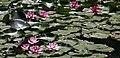Korea Gangneung Danoje Jangneung 13 (14326802355).jpg
