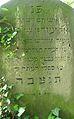 Kouřim, židovský hřbitov, stéla (003).jpg