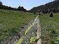Kozağacın gölünün arkı - panoramio.jpg