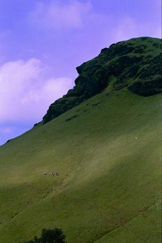Kudremukh hillside