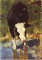 Kuh am Wasser.jpg