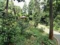 Kunming Botanical Garden - DSC02925.JPG