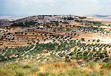 Kur arab village.jpg