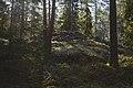 Kylmäkorvenkallion pronssikautinen hautaröykkiö 04.jpg