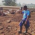L'agronomie pour le développement durable.jpg