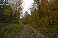 L'automne au Québec (8072363985).jpg
