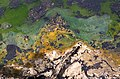 La Brea Tar Pits (laenulfean).jpg