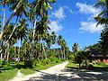 La Digue Coconut Plantation 2015.JPG