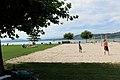 Lac de Morat (8).jpg