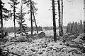 Ladoga Karelia terrain.jpg