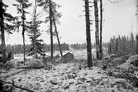 Dense forests of Ladoga Karelia at Kollaa. A Soviet tank on the road in the background according to the photographer. Ladoga Karelia terrain.jpg
