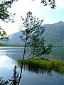 Lago di Annone - panoramio - Massimo Roselli (4).jpg