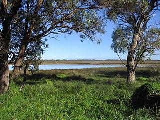 Rockingham Lakes Regional Park Protected area in Western Australia