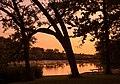 Lake Louise State Park Summer Sunset, Minnesota (36274574190).jpg