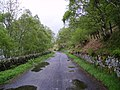 Lake Road Haweswater - geograph.org.uk - 172210.jpg