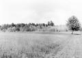 Landschaftsbild - CH-BAR - 3241213.tif