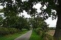 Lane from The Lambden's - geograph.org.uk - 988020.jpg