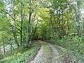 Laveyssière forêt est bourg.jpg