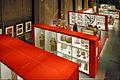 Le Musée des Confluences dévoile ses réserves (Lyon) (5471643127).jpg