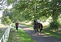 Leading horses down the drive from Pirnie House - geograph.org.uk - 239721.jpg