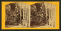 Left bank, Munising River, Grand Island, L.S, by Emery, A. G.png