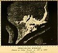 Les étoiles; essai d'astronomie sidérale (1895) (14783417605).jpg