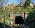 Lewes Railway Tunnel, Lewes, East Sussex - geograph.org.uk - 742170.jpg