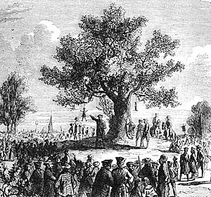 "Liberty Tree - ""The Colonists Under Liberty Tree,"" Cassell's Illustrated History of England, 1865."