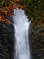Liechtensteinklamm Waterfall out of autumn leaves (15425522750).jpg