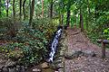 Liether Wald Wasserfall 01.jpg
