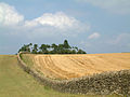 Limestone wall on Bredon Hill.jpg