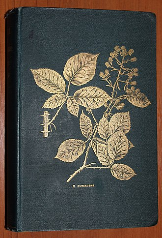 William Richardson Linton - Linton's 1903 Flora of Derbyshire showing Rubus durescens on its cover in gold leaf
