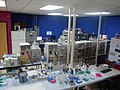 Lipomics Laboratory (13).jpg