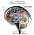 Liquor cerebrospinalis 1.png