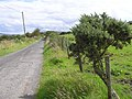 Liscabble Townland - geograph.org.uk - 1432064.jpg