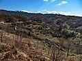 Lisina, Serbia - panoramio (9).jpg
