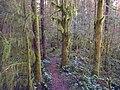 Little Death trail - panoramio.jpg