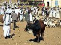 Livestock Market (8384454014).jpg