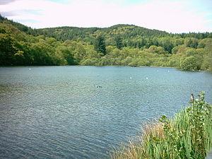 Tan-y-Bwlch, Maentwrog - Llyn Mair, looking towards Coed Llyn Y Garnedd