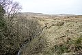 Loch Burn at Bogg Farm - panoramio.jpg