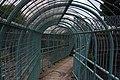 London MMB J3 Midland Main Line (Camley Street).jpg